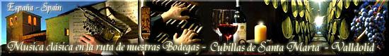 Conciertos de Órgano con Degustación de Vinos            Organ Concerts with Wine Tastings